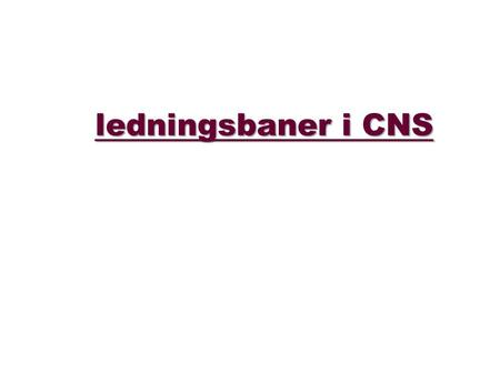 Ledningsbaner i CNS. ledningsbane: A bundle of nerve fibers having a common origin, termination, and function.