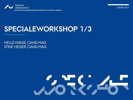 Specialeworkshop 1/3.