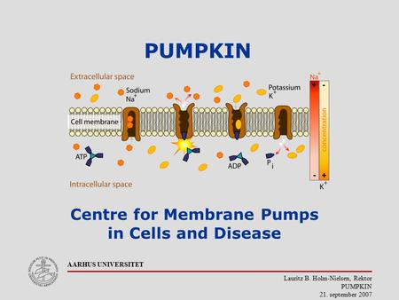 Lauritz B. Holm-Nielsen, Rektor PUMPKIN 21. september 2007 AARHUS UNIVERSITET PUMPKIN Centre for Membrane Pumps in Cells and Disease.