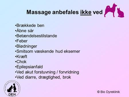massage nordjylland regulering ved endetarmen