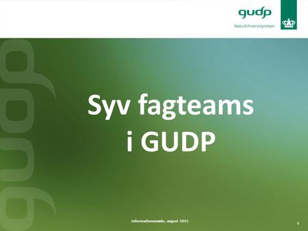 1 Informationsmøde, august 2015 Syv fagteams i GUDP.
