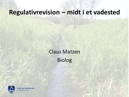 Regulativrevision – midt i et vadested