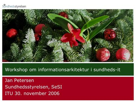Workshop om informationsarkitektur i sundheds-it