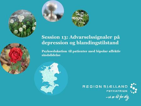 Session 13: Advarselssignaler på depression og blandingstilstand Psykoedukation til patienter med bipolar affektiv sindslidelse.