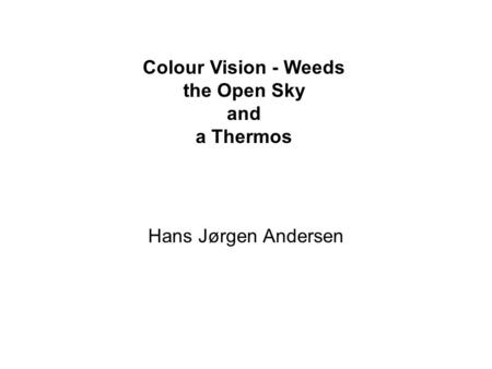 Hans Jørgen Andersen Colour Vision - Weeds the Open Sky and a Thermos.