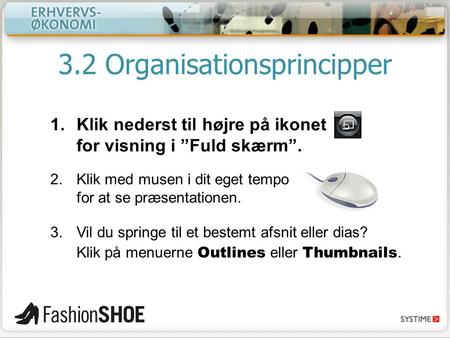 3.2 Organisationsprincipper