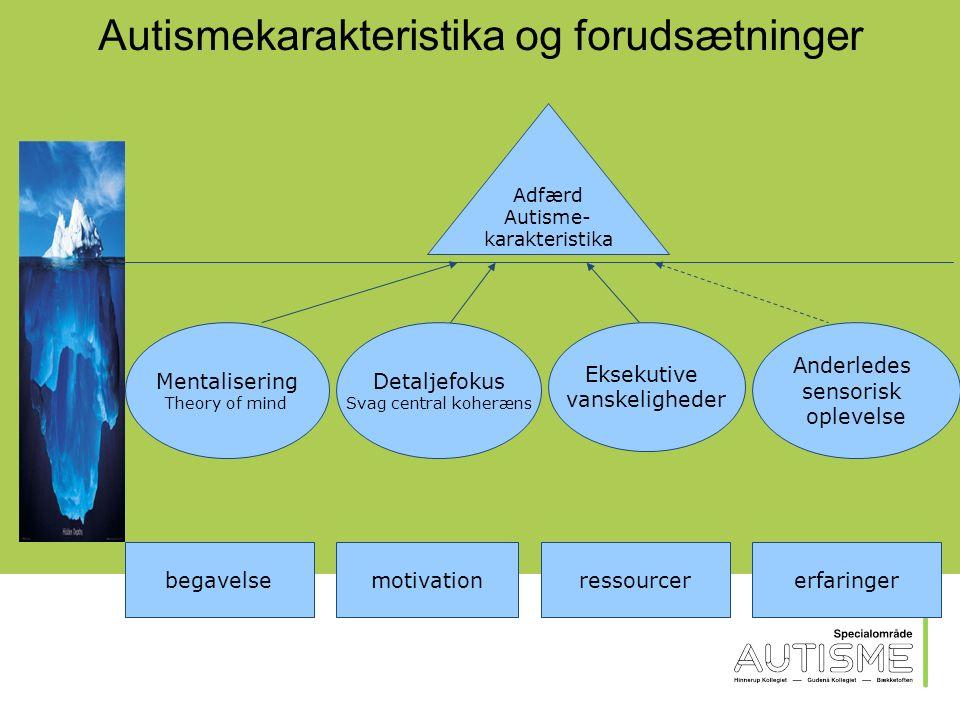 Autistiske mennesker har ofte en ujævn udvikling af de enkelte kognitive færdigheder