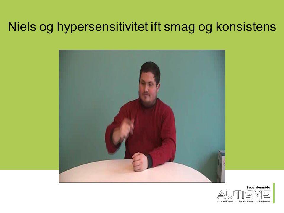 Rasmus ift detaljefokus og eksekutive funktioner