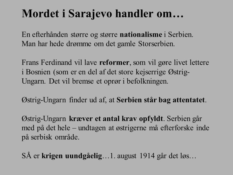 Mordet i Sarajevo handler om…