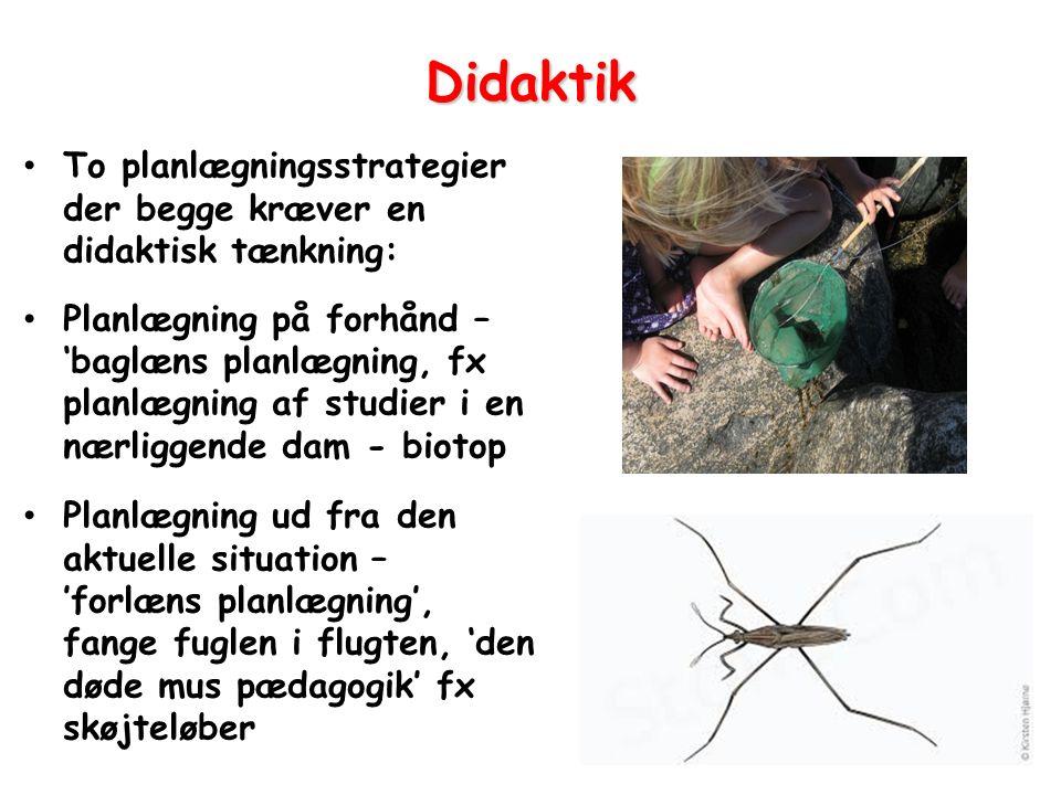 Didaktik To planlægningsstrategier der begge kræver en didaktisk tænkning: