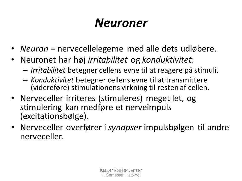 Neuroner Neuron = nervecellelegeme med alle dets udløbere.