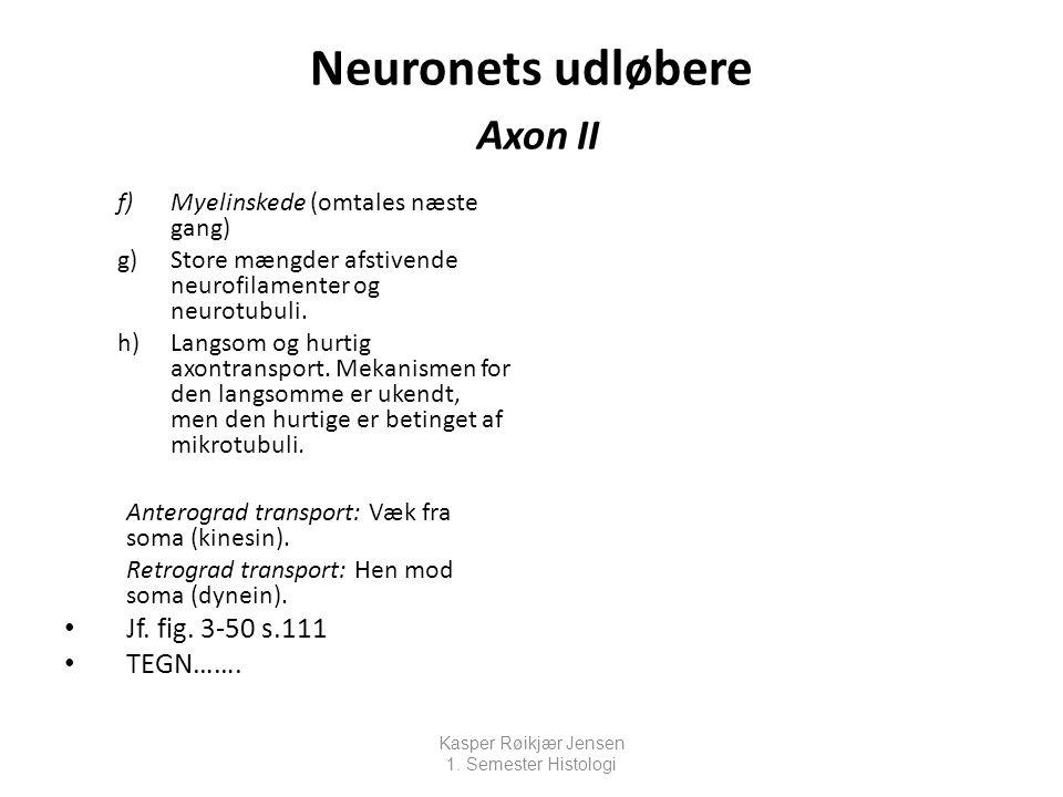 Neuronets udløbere Axon II