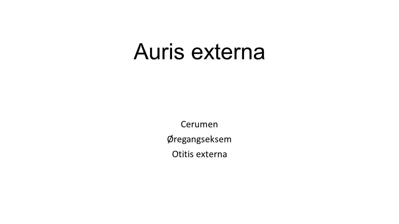 Cerumen Øregangseksem Otitis externa