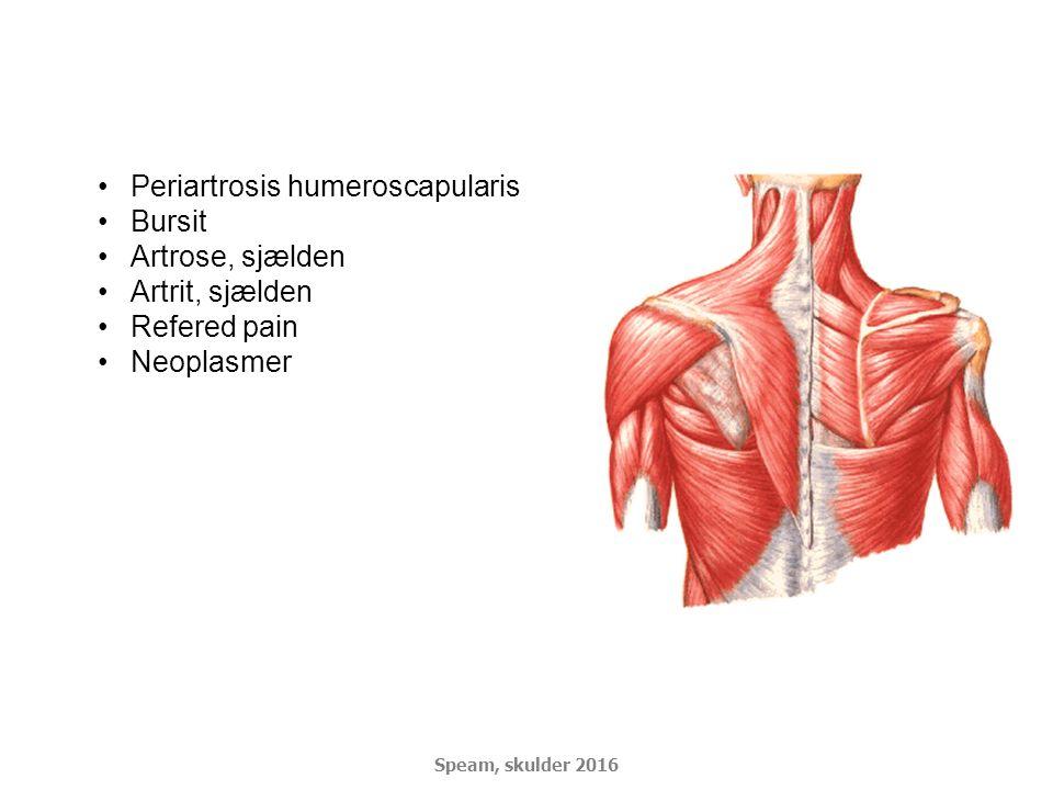 Periartrosis humeroscapularis Bursit Artrose, sjælden Artrit, sjælden
