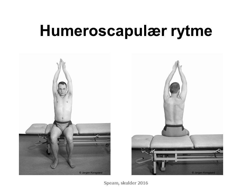 Humeroscapulær rytme DSMM Basiskursus