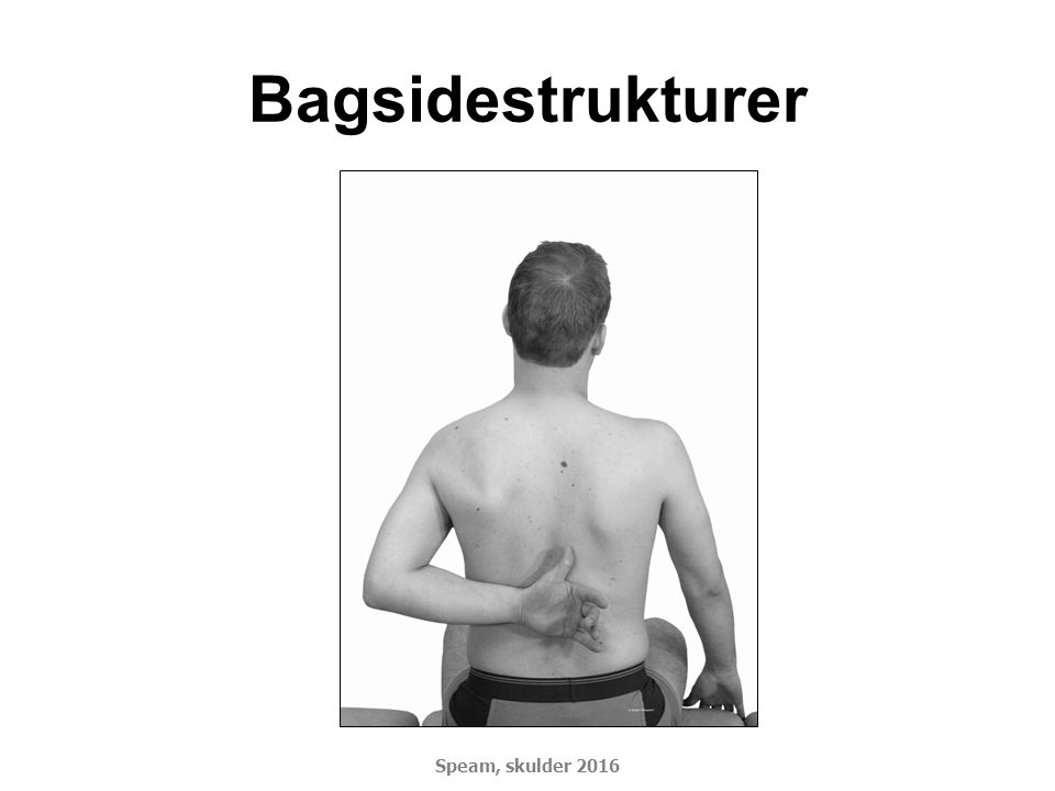 Bagsidestrukturer Speam, skulder 2016