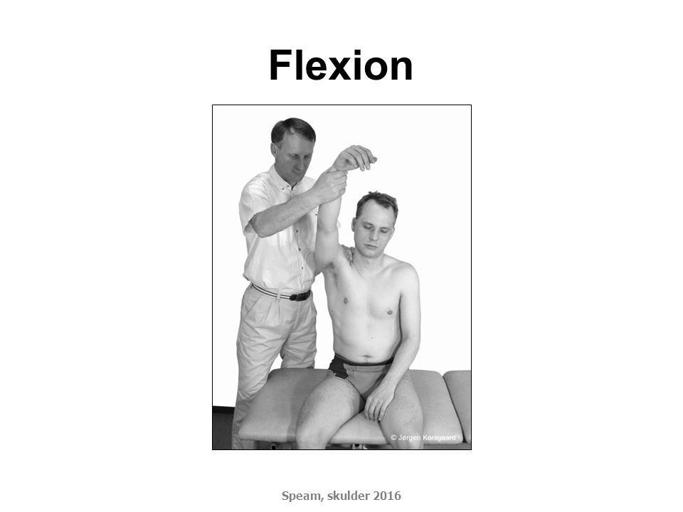 Flexion Speam, skulder 2016