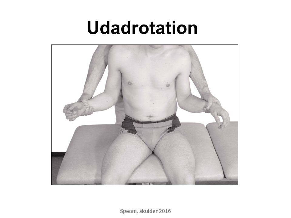 Udadrotation Speam, skulder 2016