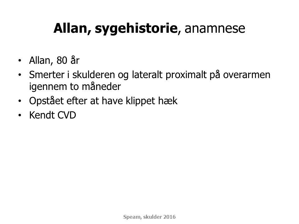 Allan, sygehistorie, anamnese