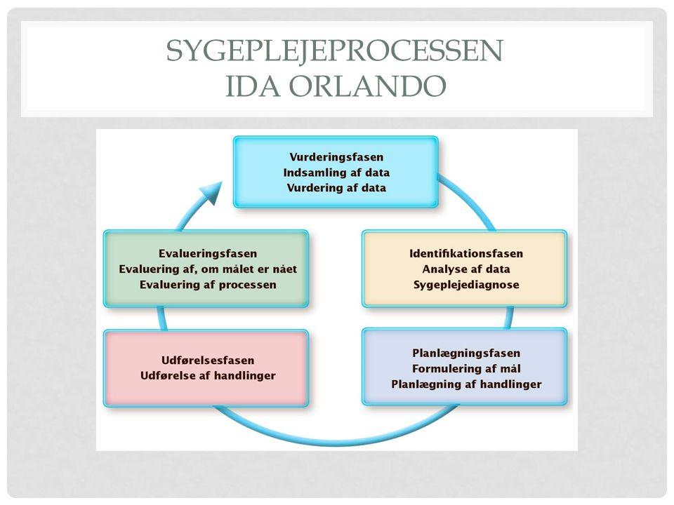 Sygeplejeprocessen Ida Orlando