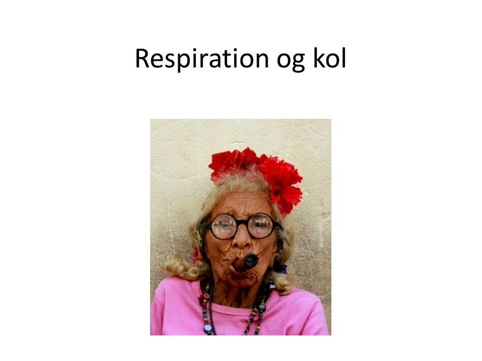 Respiration og kol