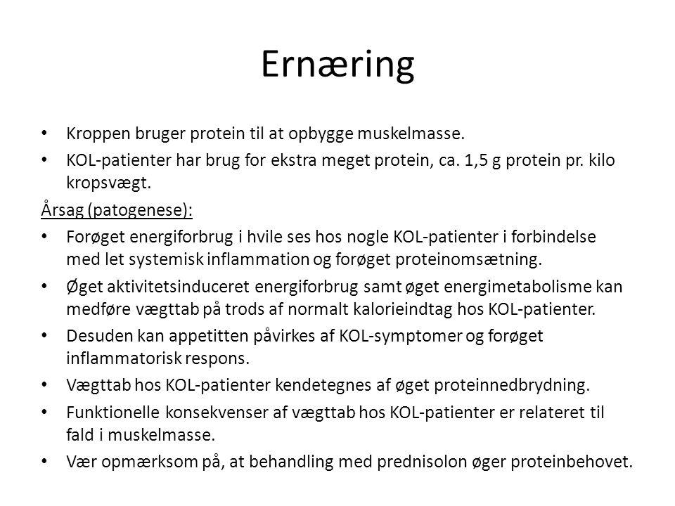 Ernæring Kroppen bruger protein til at opbygge muskelmasse.