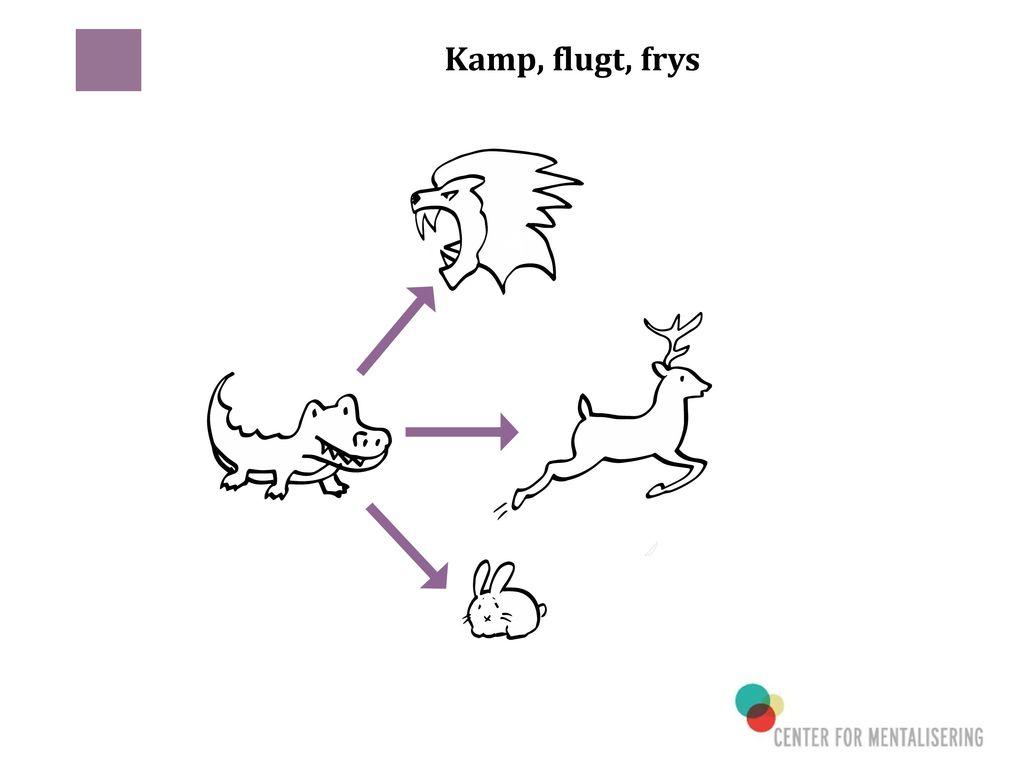 Kamp, flugt, frys