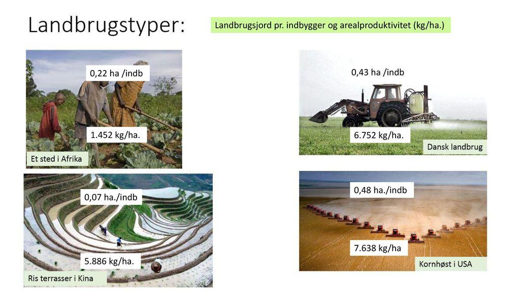 Kapitalintensivt (lille forbrug af arbejdskraft) høj arbejdsproduktivitet, høj arealproduktivitet produktion -> husdyrfoder