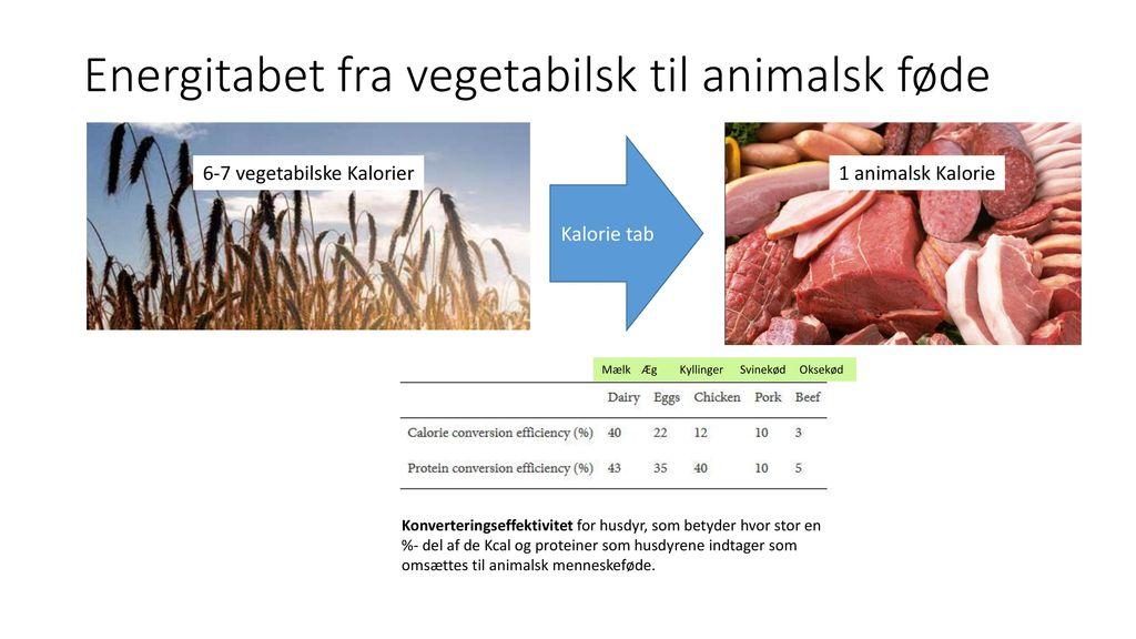 Landbrugsjord pr. indbygger og arealproduktivitet (kg/ha.)