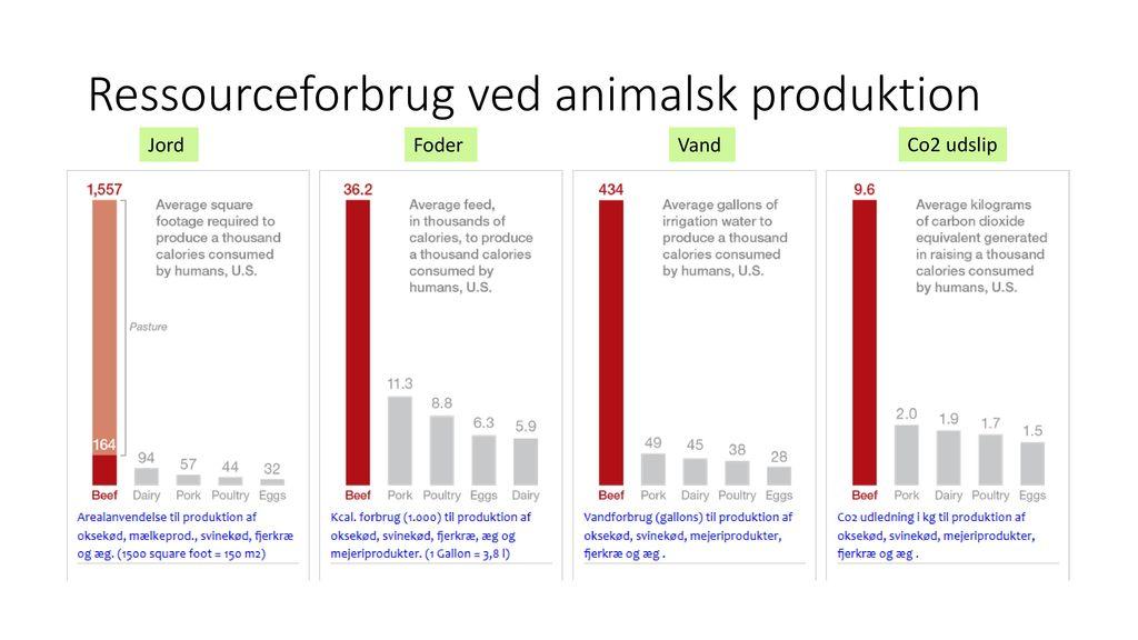 Energitabet fra vegetabilsk til animalsk føde