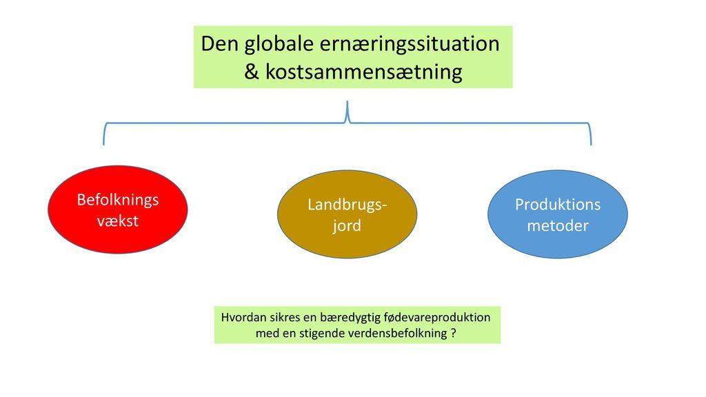 Den globale ernæringssituation & kostsammensætning