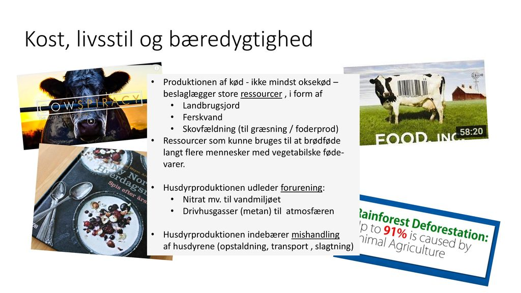 Ressourceforbrug ved animalsk produktion