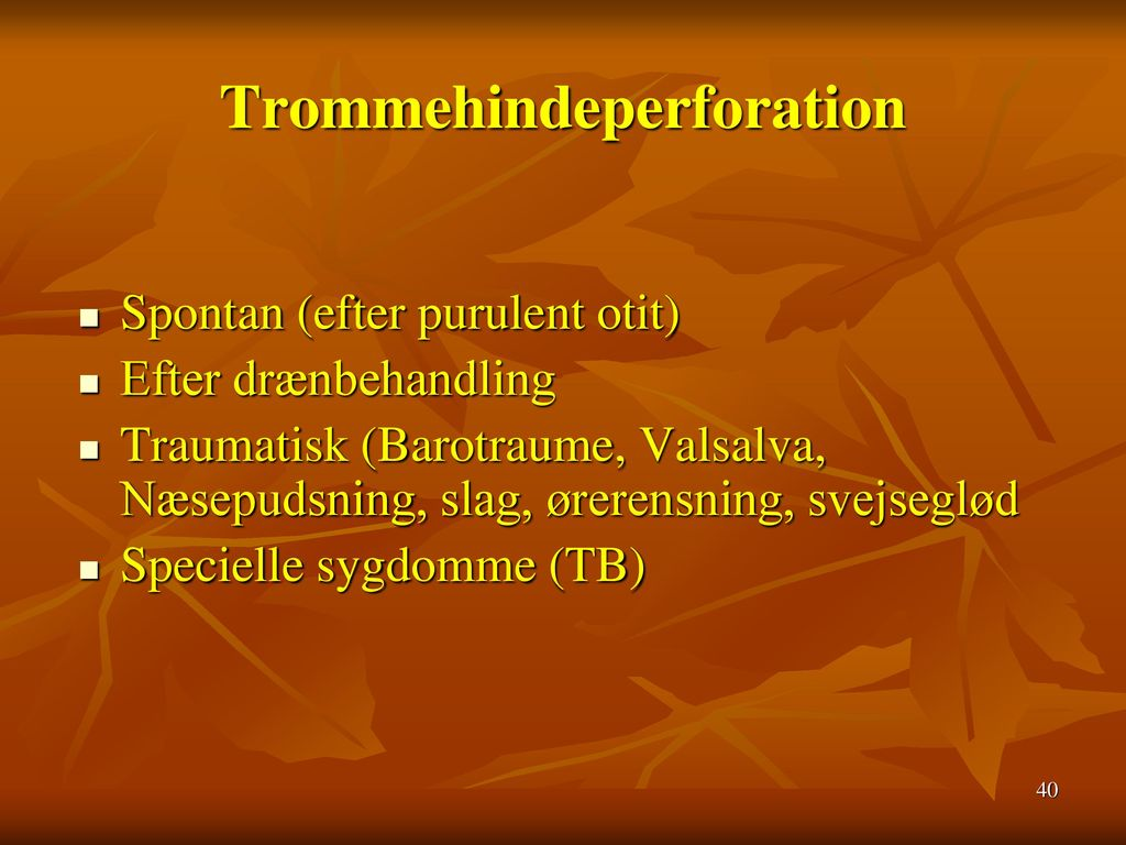Trommehindeperforation