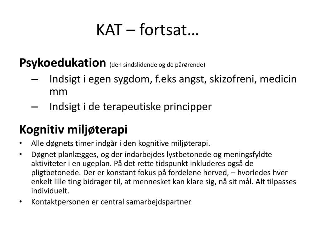 KAT – fortsat… Psykoedukation (den sindslidende og de pårørende)