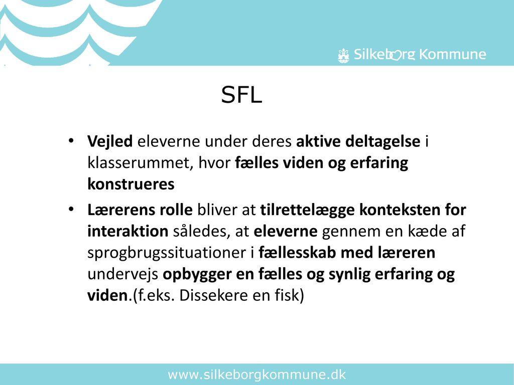 SFL Vejled eleverne under deres aktive deltagelse i klasserummet, hvor fælles viden og erfaring konstrueres.