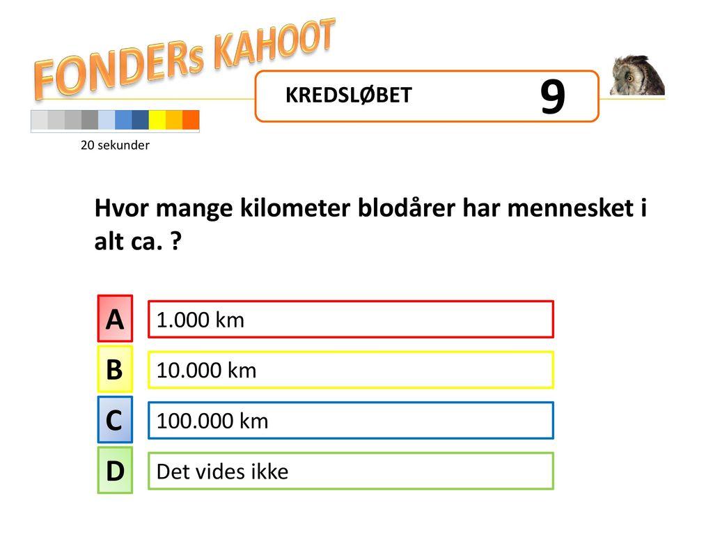 Hvor mange kilometer blodårer har mennesket i alt ca.