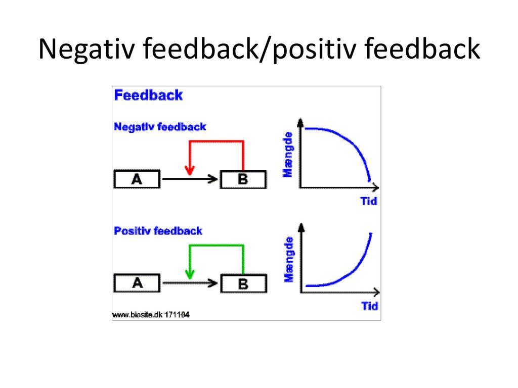 Negativ feedback/positiv feedback