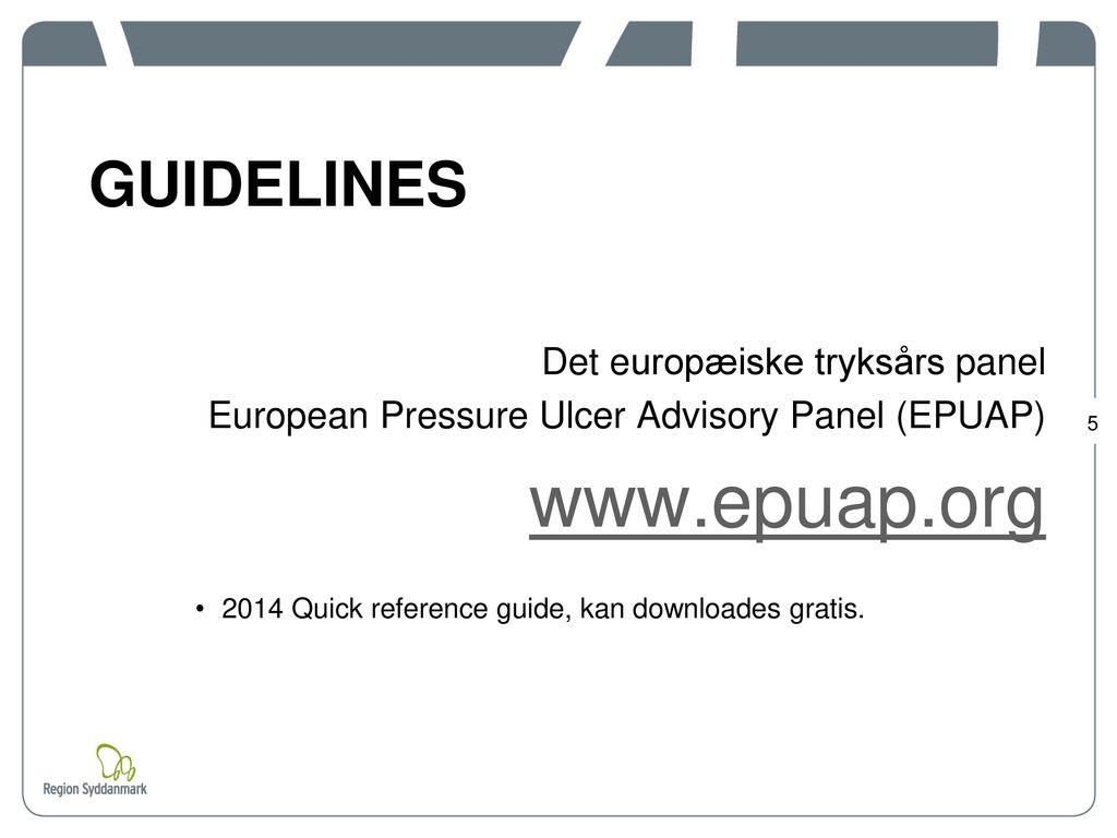 www.epuap.org GUIDELINES Det europæiske tryksårs panel