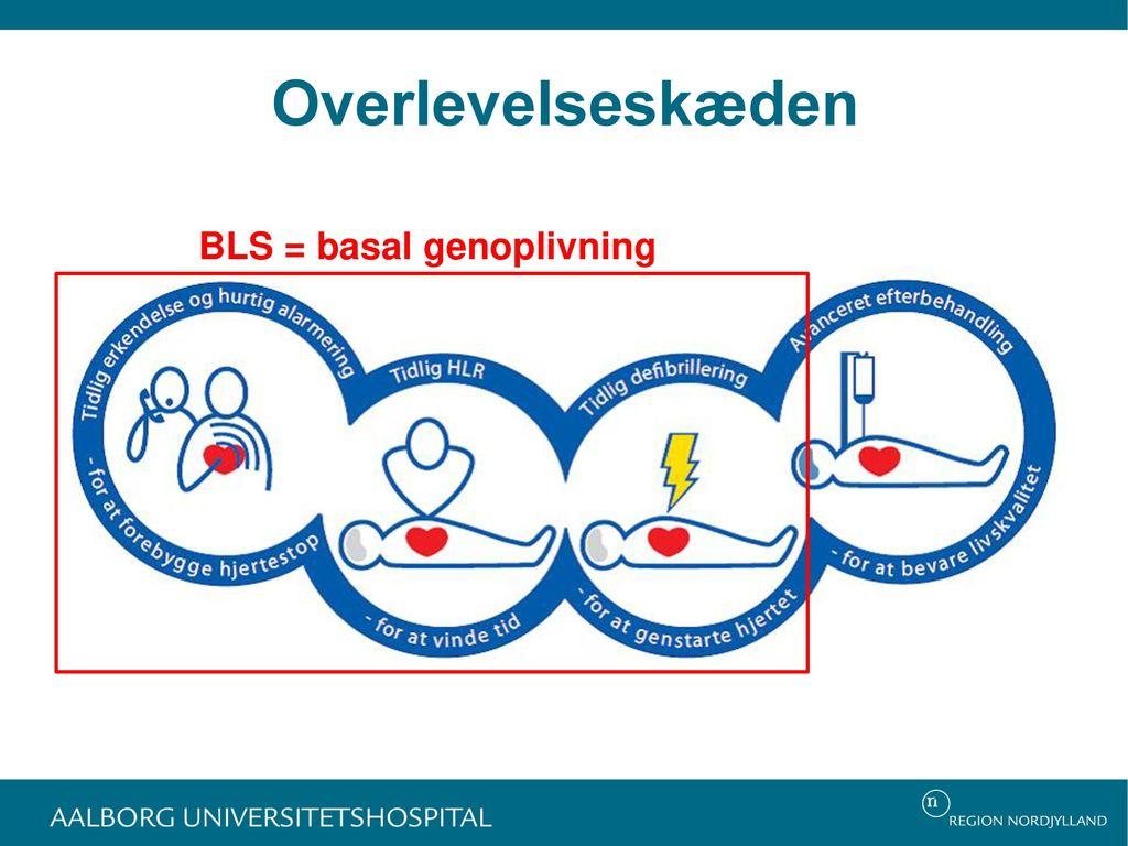 Overlevelseskæden BLS = basal genoplivning