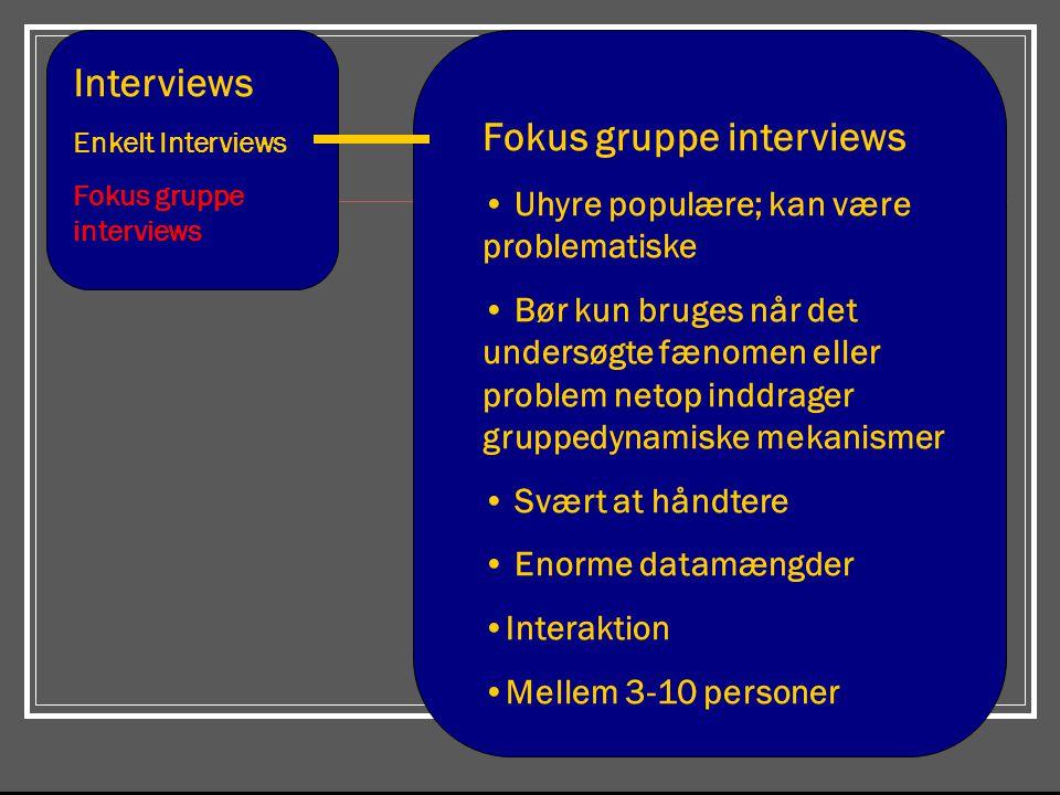 Fokus gruppe interviews