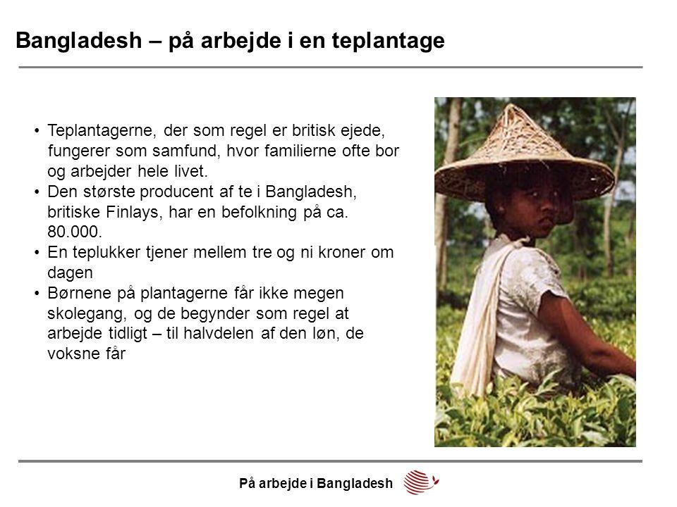 Bangladesh – på arbejde i en teplantage