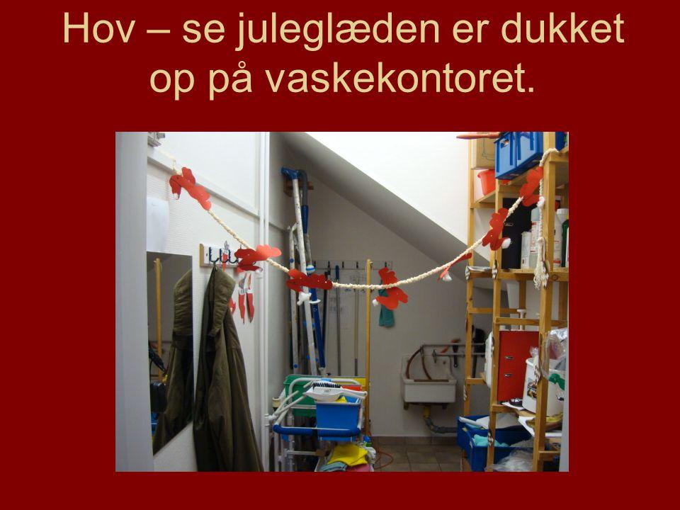 Hov – se juleglæden er dukket op på vaskekontoret.