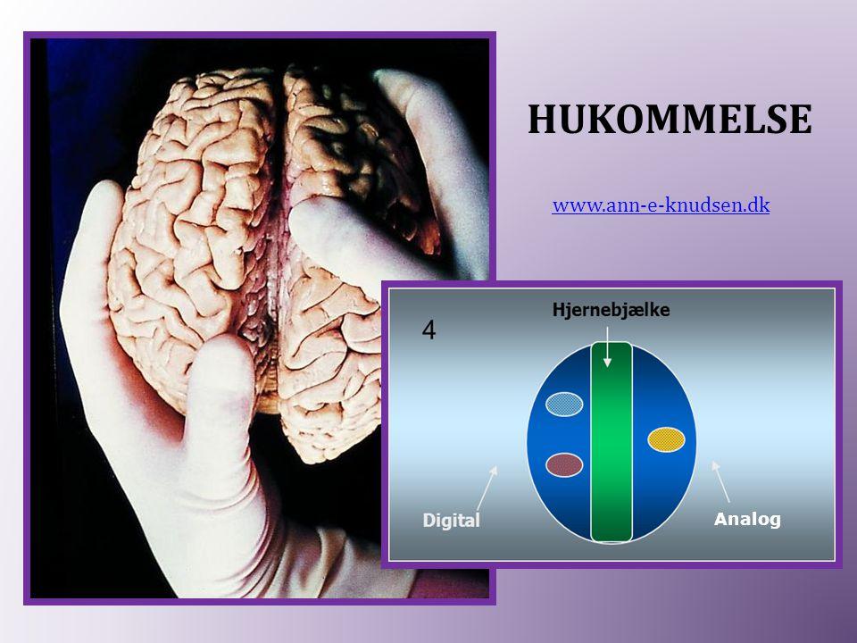 HUKOMMELSE www.ann-e-knudsen.dk Analog