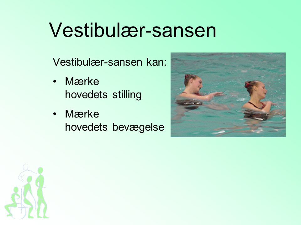 Vestibulær-sansen Vestibulær-sansen kan: Mærke hovedets stilling