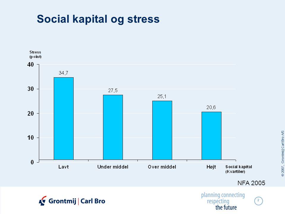 Social kapital og stress