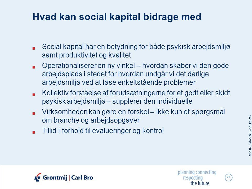 Hvad kan social kapital bidrage med