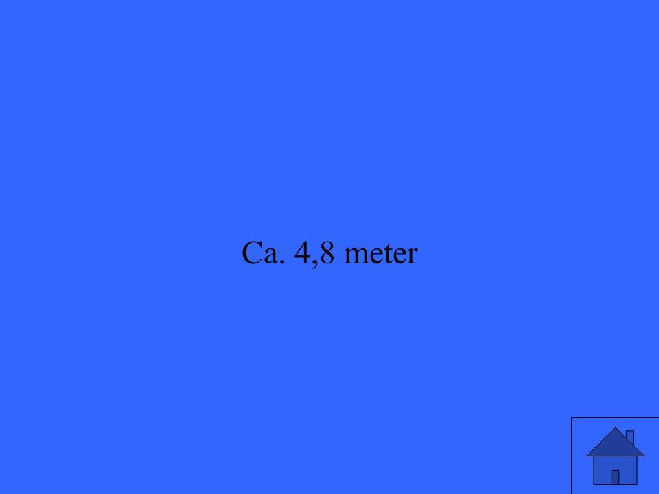 Ca. 4,8 meter