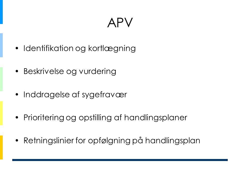 APV Identifikation og kortlægning Beskrivelse og vurdering
