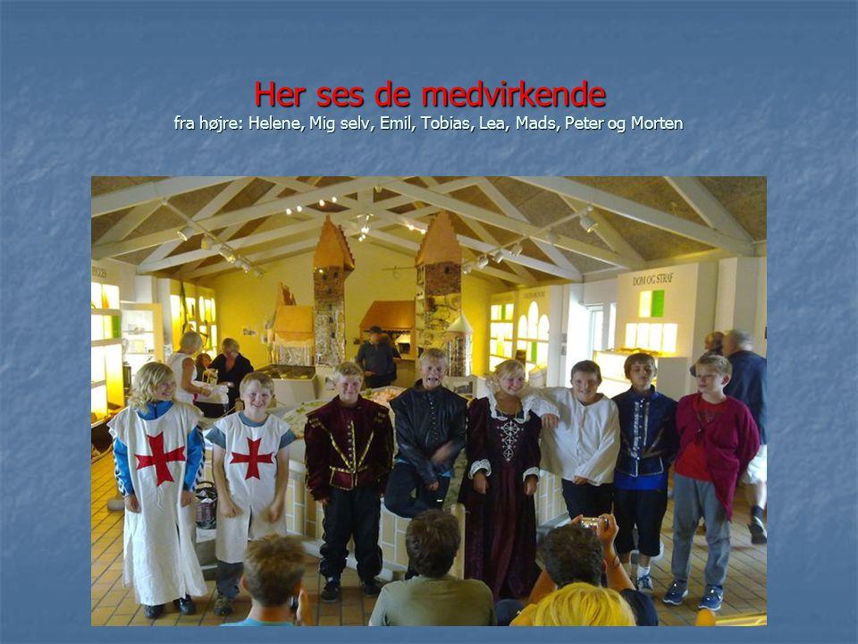 Her ses de medvirkende fra højre: Helene, Mig selv, Emil, Tobias, Lea, Mads, Peter og Morten