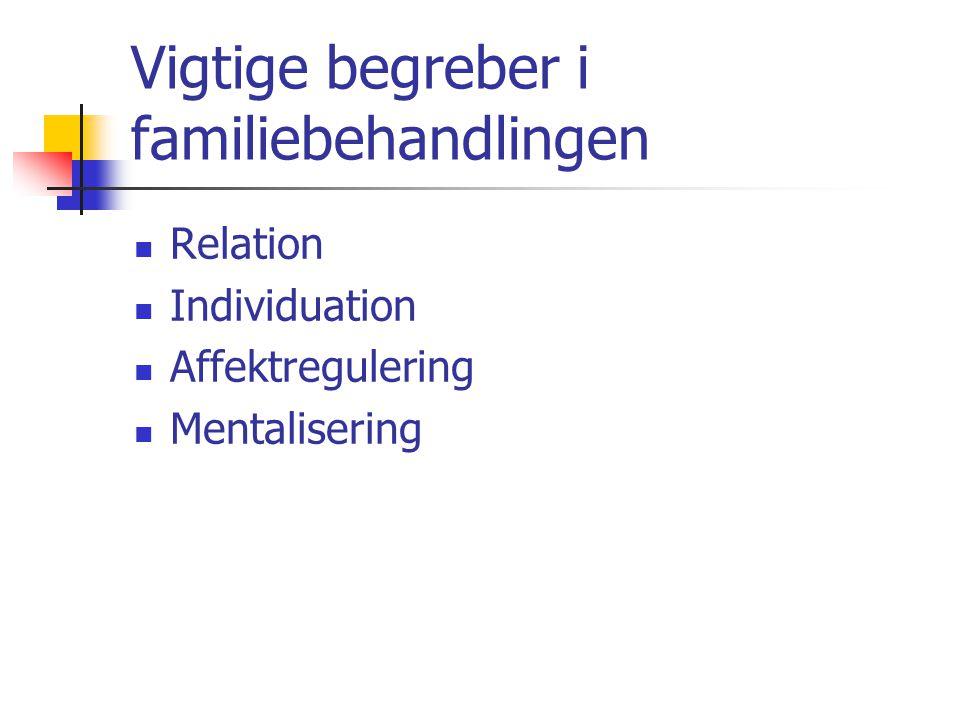 Vigtige begreber i familiebehandlingen